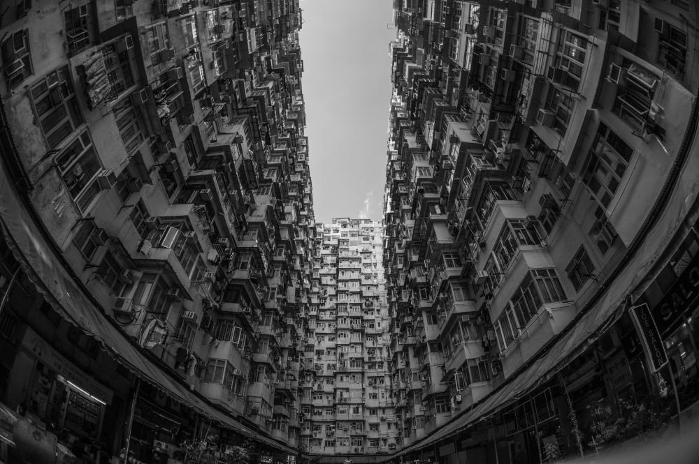 pexels-photo-584191.jpg